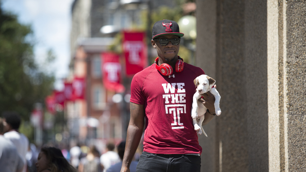 Student wearing Temple shirt carries a dog on campus.